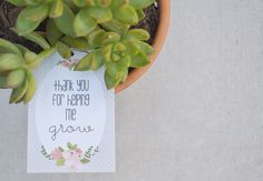 teacher appreciation gift - thanks for helping me grow free printable gift tag from theteachermama.com