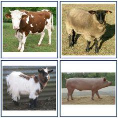 A la douce: Animaux de la ferme
