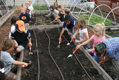 Explorer's Learning Garden is all about process -- educational, emotional, environmental and social #edchat