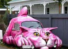 Cat Car ! Funny! :)