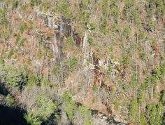 Lise's Log Cabin Life: The Tallulah Gorge