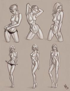 Female anatomy ref by Warren Louw