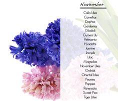 Wedding Flowers In Season November What Are
