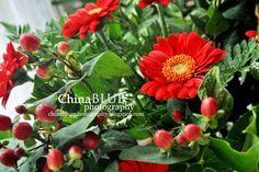 Gerbera Berry Bouquet