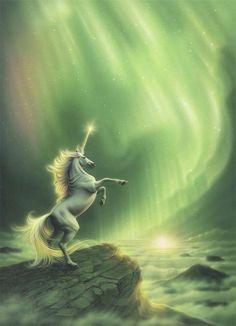 northern lights unicorn