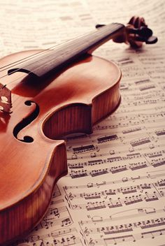 old violin – Musik Piano Y Violin, Violin Art, Violin Music, Pelo Color Violin, Musik Wallpaper, Violin Photography, Best Guitar Players, Music Aesthetic, Classical Music
