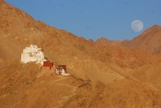 Ngamgyal Tsemo Gompa and the Fort seen from Shanti Stupa in Leh India Travel Guide, India Tour, Leh, Places Of Interest, Southeast Asia, Monument Valley, Pictures, Google Search, Photos