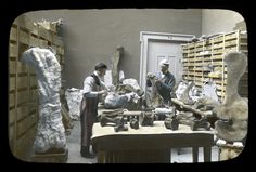 The Field Museum.  ,Travel back in time and explore #geology images from the photo #archives