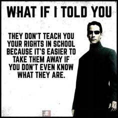 Education-you would be telling the truth~ Wisdom Quotes, Me Quotes, Class Quotes, Refugees, Great Quotes, Inspirational Quotes, Political Quotes, Thing 1, Truth Hurts