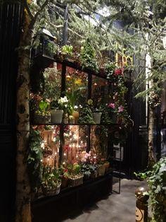 クリスマスシーズンのお花屋さんの画像   H.I.S.パリ支店のブログ