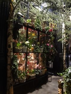 A beautiful flower shop in Paris with a second hand book shop next door.