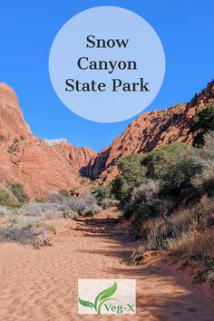 Located in the Red Cliffs Desert Reserve, Snow Canyon State Park in Utah has incredible landscapes and a variety of topography. The park has plenty to do for a long weekend or even an entire week. Here is our guide to some of the best activities available at Snow Canyon State Park, including where to hike and where to camp. Us Travel, Family Travel, Travel Ideas, Travel Inspiration, Snow Canyon State Park, Utah Camping, Utah Vacation, Hiking With Kids, Utah Hikes