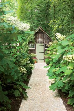 Notice the Details: The Path - Dream Garden! It Even Has a Chicken Coop - Southernliving. An intriguing destination at the end of the path beckons you to enter the back garden from the parking area. Native oakleaf hydrangeas partially obscure the shed, piquing curiosity about what lies ahead.