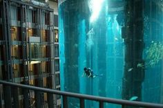 Radison Blue hotel in Berlin. Large aquarium placed in the middle of the hotel, where you can take an elevator that is placed in the middle of the aquarium...