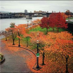 The Morrison bridge over the Willamette river in Portland , Oregon. Photo credit to my niece Julie Maxey!