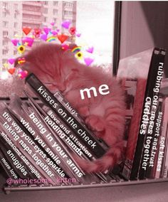 This is so sweet my heart 😭 Cute Cat Memes, Cute Love Memes, Love Memes For Him, Bf Memes, Funny Memes, Relationship Memes, Cute Relationships, Flirty Memes, Wholesome Pictures