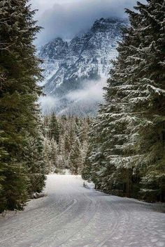 59 Ideas For Winter Landscape Photography Snow National Parks Winter Szenen, Winter Magic, Winter Road, Winter Mountain, Winter Camping, Mountain View, Winter White, Mountain Biking, Landscape Photography