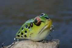Is this frog a prince? http://www.bradwiegmann.com/lures/hard-baits/713-rebel-frog-r-a-real-prince.html Photo copyright Brad Wiegmann Outdoors.
