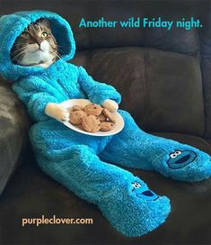 Another wild Friday night! ... I should put the cookie monster snuggie on my Christmas wishlist board too