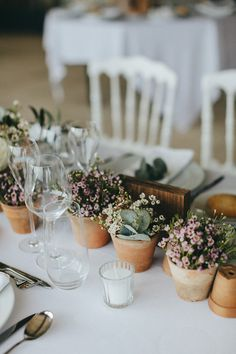 Potted Plants Table Centrepieces - Reego Photographie | Wanderlust Wedding…