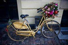 copenhagen cycle