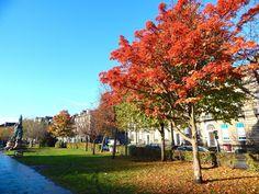 Los principales barrios de Edimburgo - Cualquier Destino - Autumn in Edimburgh Scotland