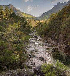 Rio Homem, Mata da Albergaria, Terras de Bouro (Parque Natural da Peneda-Gerês).