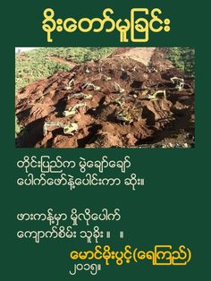 POET MOE PWINT WRITE POEM ABOUT JADE MINING IN MYANMAR (CORRUPTION BY CRONIES-GOVERNMENT OFFICIAL-CHINESE