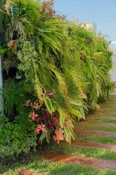 Jardim vertical misto, composto por plantas ornamentais tropicais, o projeto do…