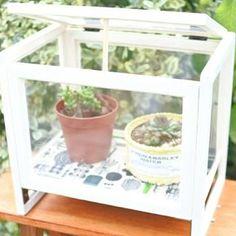 多肉植物を入れられる可愛いミニ温室、買うとちょっと高い… 100均材料で手軽に作れないかな?と思ったのがきっかけです そんな中見つけたセリアのフォトフレームを組み合わせてみたらピッタリ! フォトフレームを活かして、見せて飾れる可愛い収納BOXが出来上がりました♪