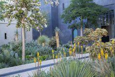 Le Jardin Secret, Marrakech   Tom Stuart-Smith