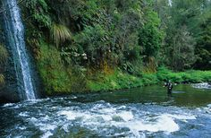 Landscapes - David Glasscock Photography - Sun Valley Idaho New Zealand wedding wildlife outdoor sports photography