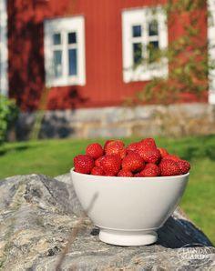 L U N D A G Å R D   inredning, familjeliv, byggnadsvård, lantliv, vintage, färg & form: Trädgård/Natur