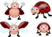 Ladybug cartoon set stock photography