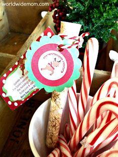Quest'anno mi sono concentrata molto di più sulla Magia del Natale. L'elfo, la festa per la letterina di Babbo Natale e ora voglio condividere con voi un altro regalino. Sto preparando delle ampolline (quelle proprio da chimico trovate su un sito per laboratori) con dentro dell'avena unita a dello zucchero cristallino, quello che si usa…   [read more]
