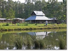 "General Coffee State Park in Nicholls, GA is one of southern Georgia's ""best kept secrets."""