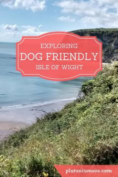 Dog friendly Isle of Wight: UK | The Isle of Wight is just of the South Coast of England and reachable by a short ferry journey. It is one of the most dog friendly places I have been to, ideal for a family with both children and dogs. We spent a lot of ti