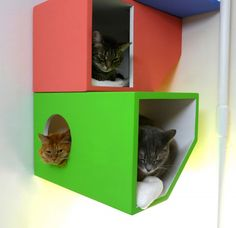 A Modern, Four-Story Home For Cats