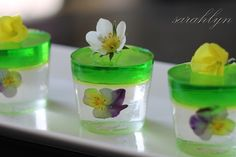 Malibu and midori jelly shots - what? It's chemistry & botany all in one! :D