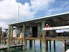 Compass Cay, #Bahamas. #Caribbean