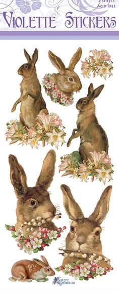 P63-Easter Hares