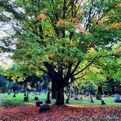 Lone Fir Cemetery. Autumn.