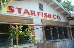 The Star Fish Company Seafood Market and Restaurant in Cortez