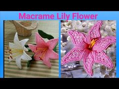 How To Make macrame flower/ Macrame Lily Flower / DIY Flower Diy, Flower Crafts, Diy Flowers, Fabric Flowers, Macrame Knots, Macrame Jewelry, Hanging Flower Wall, Micro Macramé, Diy Pins