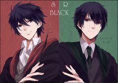 Harry Potter, Regulus Black, Sirius Black