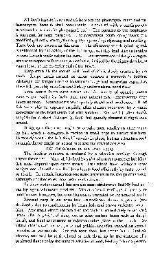 1960 Flavour Article - C7