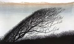 BENT TREE by Merlyn Cheaterman woodcut on lime. x 56 cm, on Rives BFK paper. Edition of 50 oil-based water washable relief printing ink Landscape Prints, Monochrom, Wood Engraving, Linocut Prints, Woodblock Print, Prints For Sale, Installation Art, Creative Art, Decoration