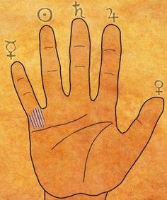 Wicca, Palm Reading, Palmistry, Naha, Life Hacks, Symbols, Professor, Wattpad, Amazon
