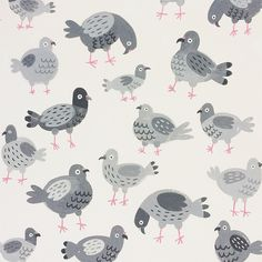 A pigeon party pattern | Jacqui Lee illustration