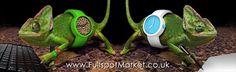 OClock - Full Spot - Relógios Italianos assinados pelo designer Emanuelle Magenta. AGORA NO BRASIL !!!Shopping Nações Unidas - SP. Av. das Nações Unidas, 12.901- Piso 1 S (Junto ao shopping D&D, ao lado do Banco Bradesco) (11) 3508-1370
